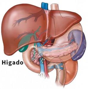 Un 2% de los españoles sufre de hepatitis