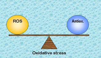 ozonoterapia-alzheimer